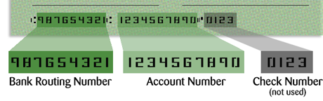check image showing routing & account number